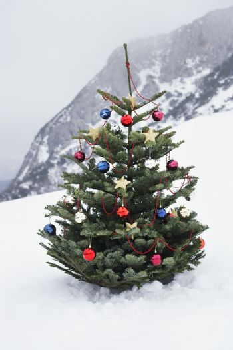 Christmas tree on mountain slope