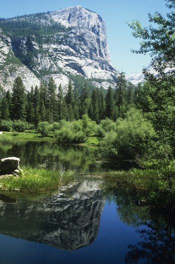 Reflection of mountain and forest in lake