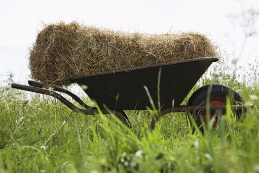 Side view of hay bale on wheelbarrow in field