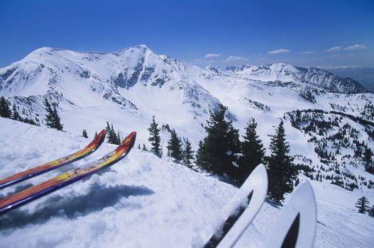 Two Pairs Of Skis On Edge Skirun