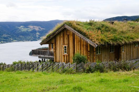 house with a grass on a roof with overcast sky