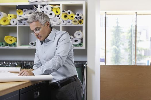 Middle aged man studying paperwork in office