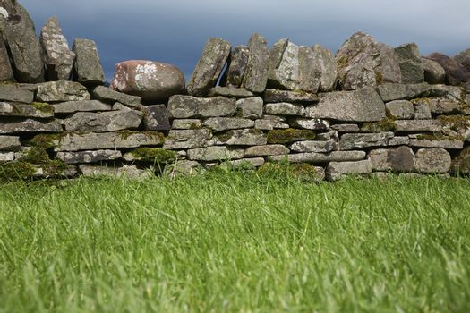 Stone wall by field