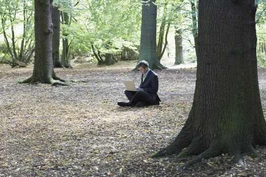 Businessman using laptop while sitting on land in forest