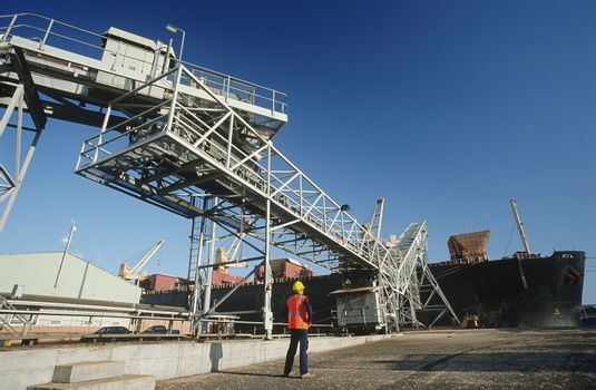 Woodchip being loaded on to bulk carrier ship for export