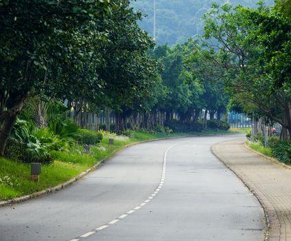 Vehicle path with tree