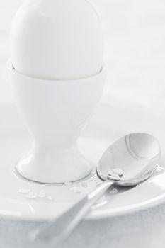 Egg in egg cup on saucer studio shot