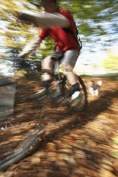 Defocus image of dog chasing man on mountain bike through forest