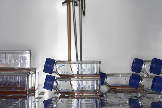 Closeup of bottles preserved in laboratory fridge