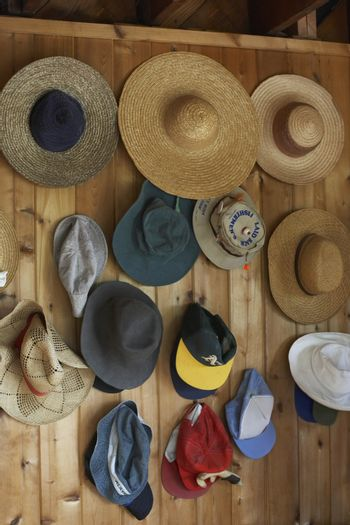 Collection of hats on coat hooks