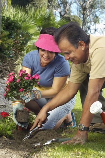 Man digging while woman holding flower plant in garden
