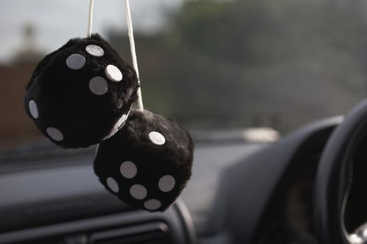 Fluffy furry dices hanging in a car