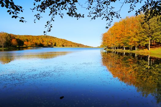 Autumn landscape with colorful forest and lake