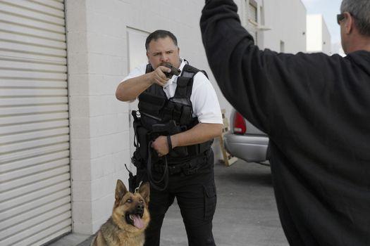 Security guard with dog aiming gun at burglar