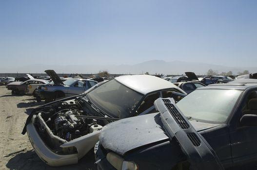 Wrecked cars in junkyard