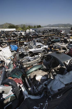 Wrecked and broken down cars at an automotive junkyard
