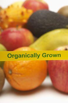 Closeup of various organically grown fruits