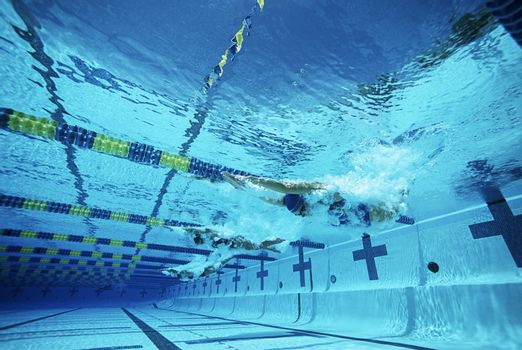 Underwater view of swimmers in pool