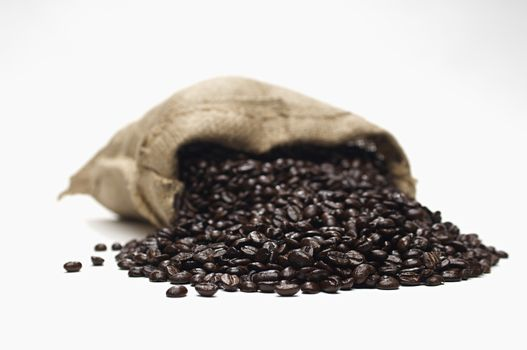 Closeup of fresh coffee beans scattering out of burlap sack isolated over white background
