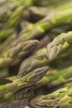 Closeup of green asparagus