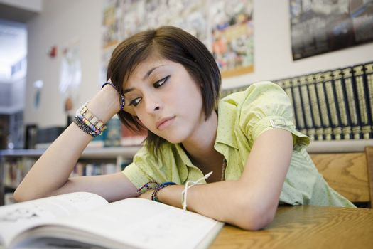 High School Student Studying