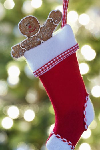 Gingerbread man in Christmas stocking