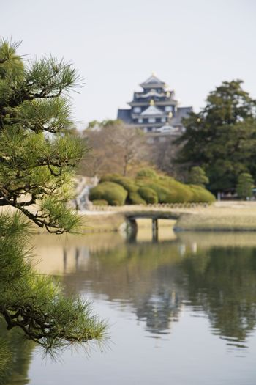 Pond in Korakuen Garden in Okayama