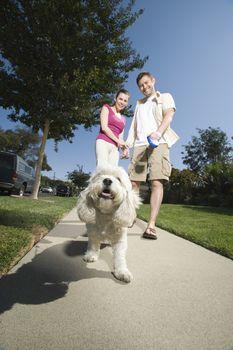 Couple walking dog along pavement