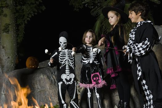Girls and boys (7-9) wearing Halloween costumes cooking marshmallows on campfire