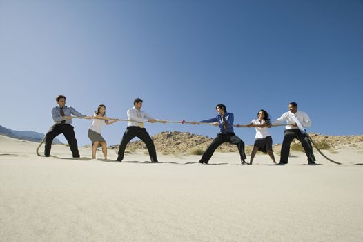 Business People Playing Tug of war in the Desert