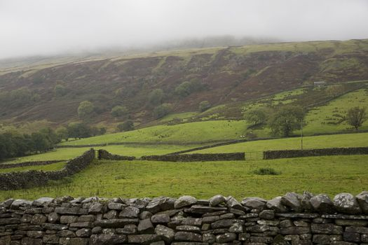 Fields in Yorkshire Dales Yorkshire England
