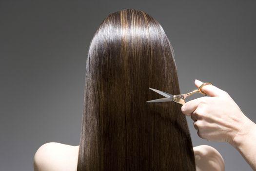 Woman having haircut rear view