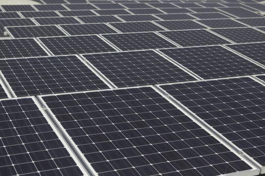 Large array of solarpanels