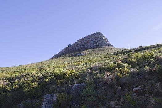 Lions Head Mountain