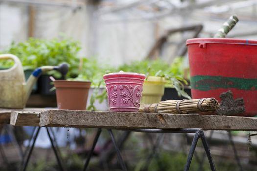Gardening equipment in greenhouse