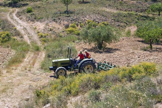 Faming land in Murcia