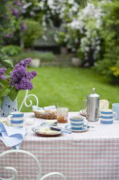 View of breakfast table in backyard