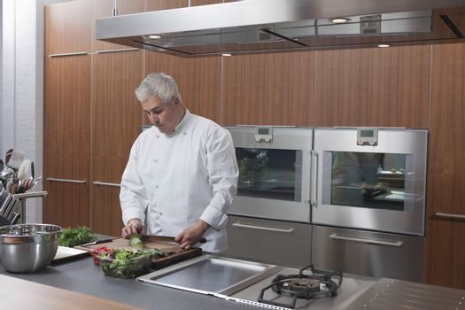 Male chef chopping vegetables in commercial kitchen