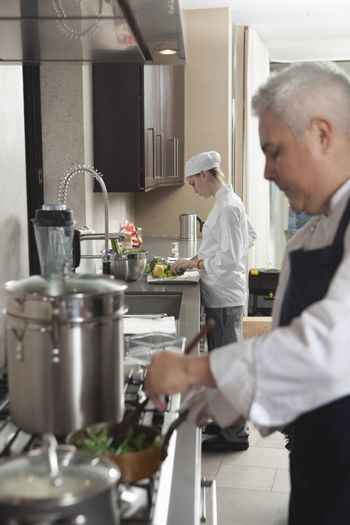 Male and female chefs working in commercial kitchen