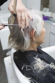 Hair stylist cutting senior woman's hair in salon