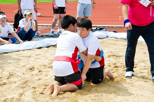 Hanmaeum International Sports Festival 2013
