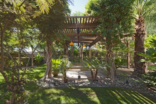 Peaceful garden with canopy