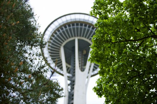 View through trees of Space Needle