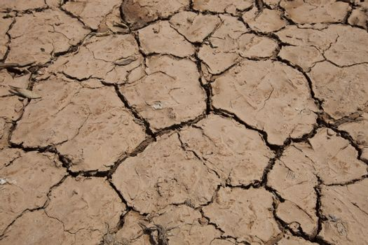 Close-up view of dry cracked soil