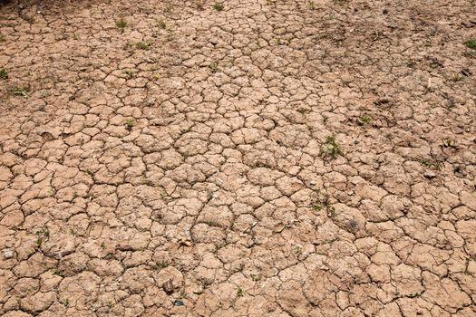 Dry cracked red soil