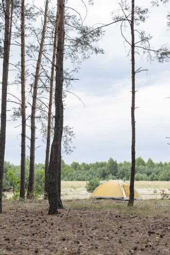 Tent in forest against cloudy sky