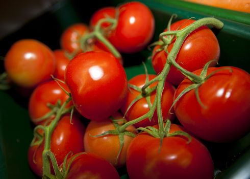 Fresh tomatoes in grocery store