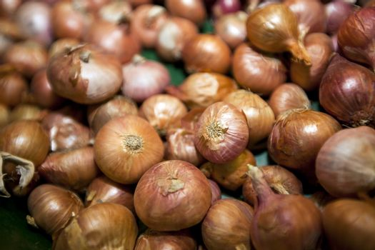 Close-up of onions in grocery store