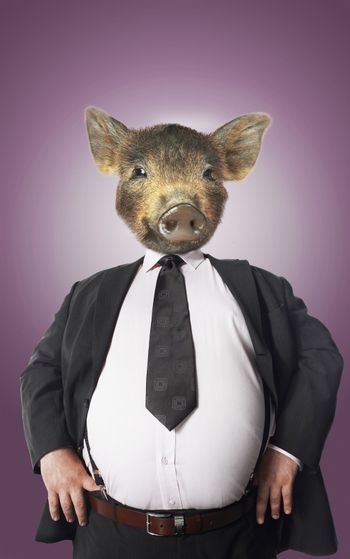 Businessman with pigs head