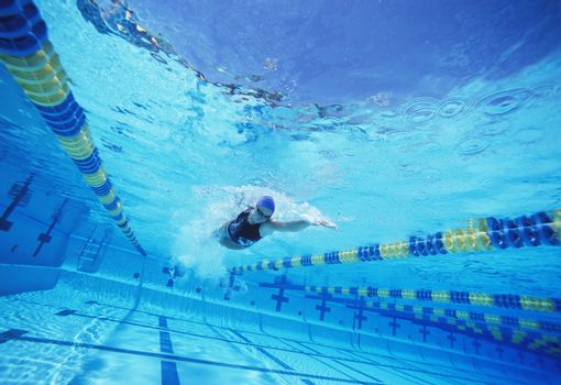 Young female swimmer in competition